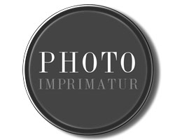 serino-photo-imprimatur-button-logos-250px